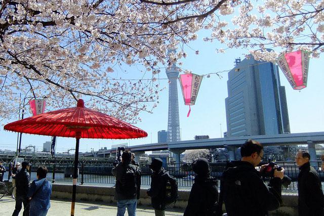 隅田川公園