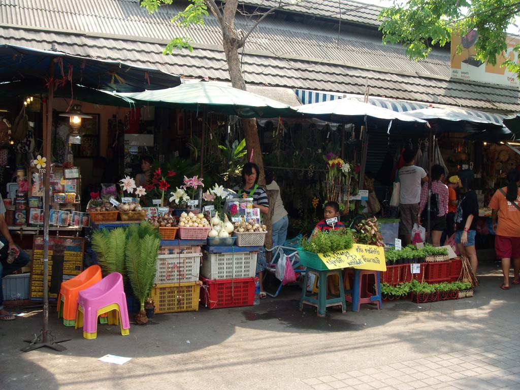 Chatuchak Weekend Market恰都恰週末市場