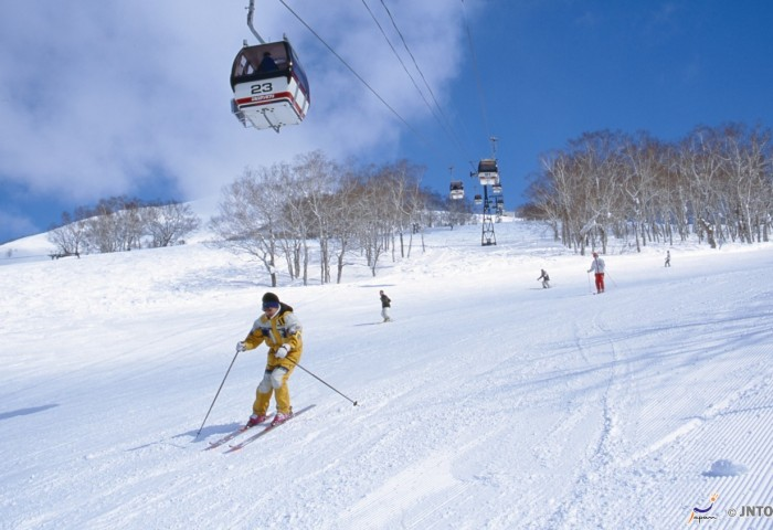 新雪谷(Niseko)滑雪