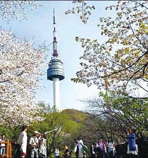 首爾 | 南山公園