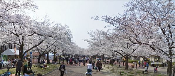大阪|萬博紀念公園