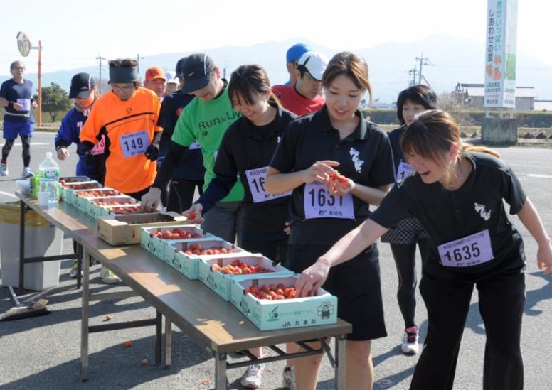 【粉紅路跑】熊本馬玉名草莓馬拉松
