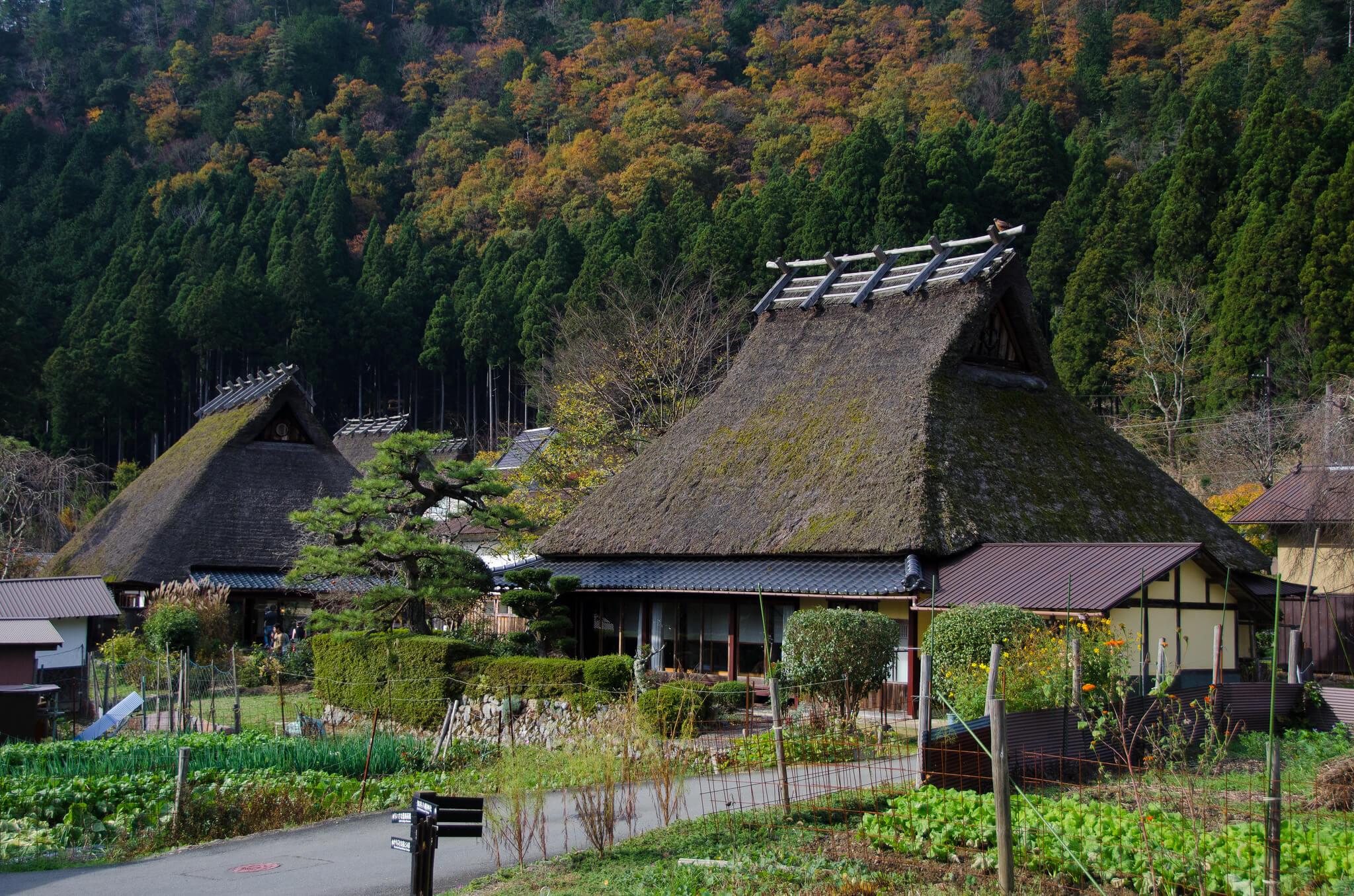 京都-美山
