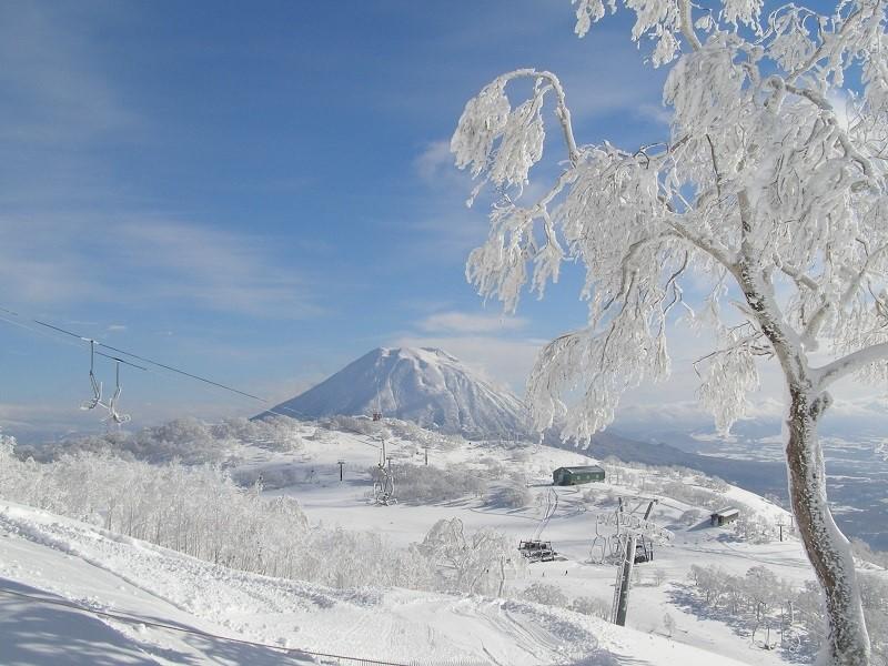 新雪谷Annupuri國際滑雪場