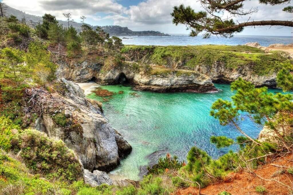羅伯斯角州立保護區 Point Lobos State Reserve