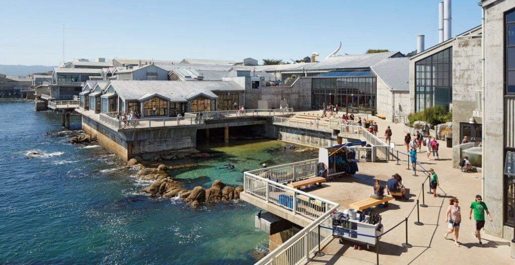 蒙特利灣水族館Monterey Bay Aquarium