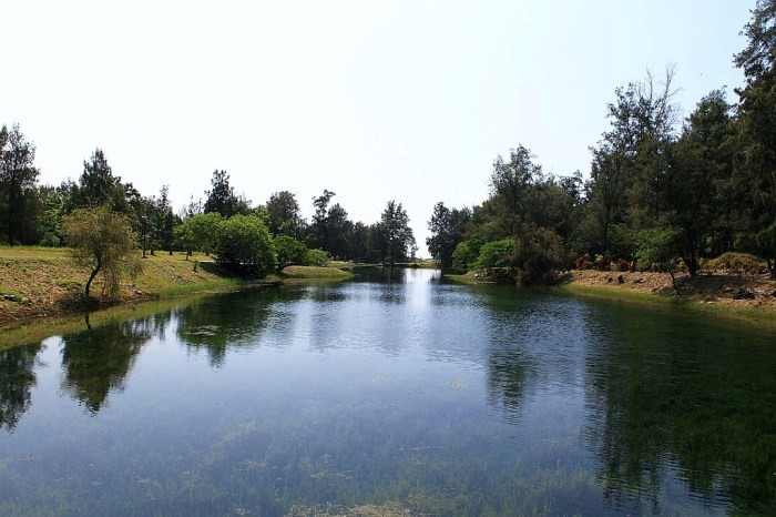 No.2 台東森林公園