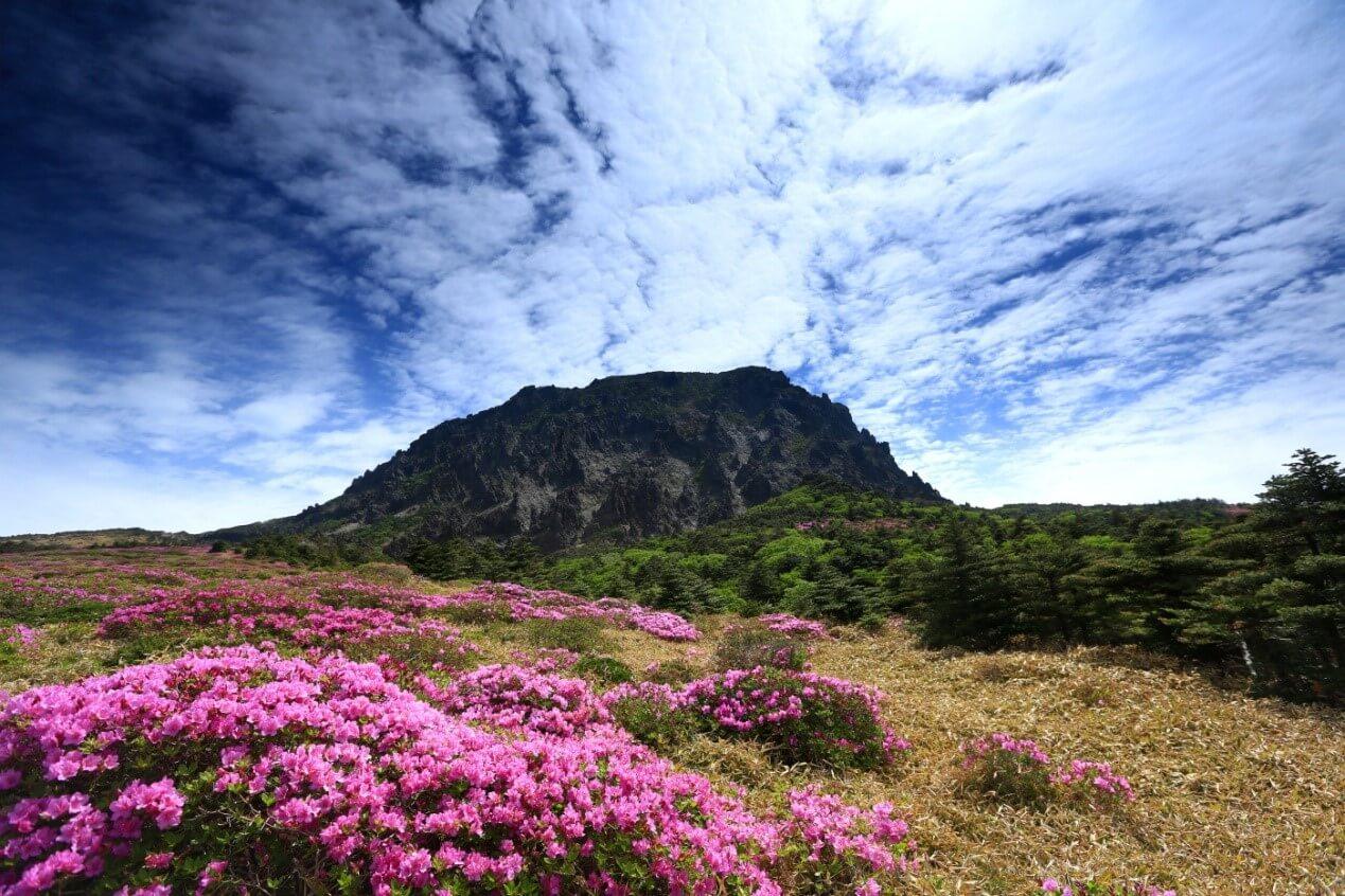 漢拏山(漢拿山) 한라산