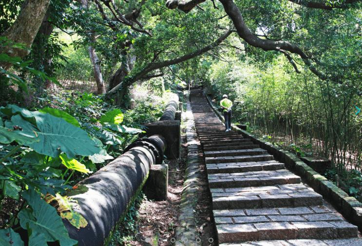 台北|天母水管路古道