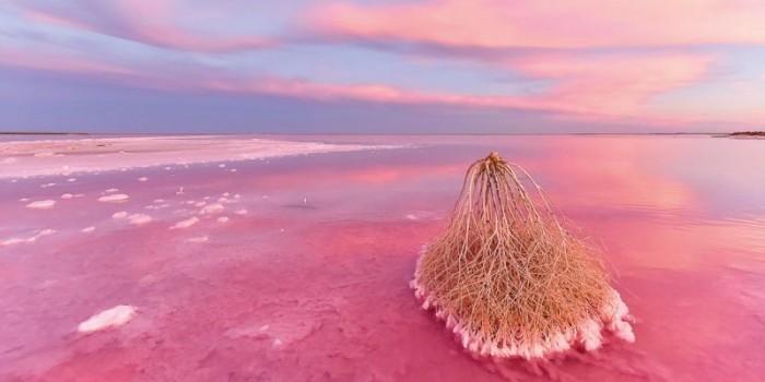 澳洲 蒂勒爾鹽湖