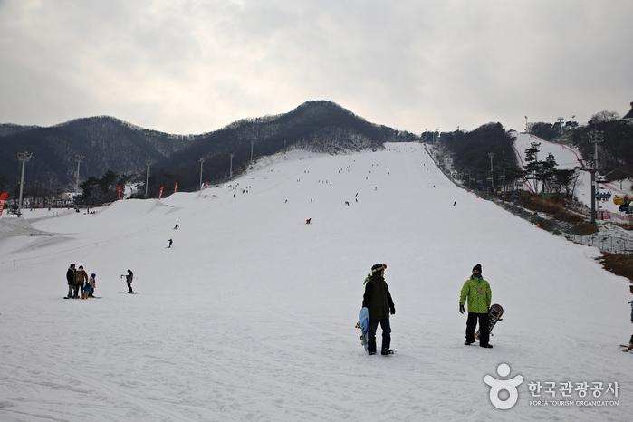 首爾近郊──京畿道五大滑雪場介紹 冬天就到韓國滑雪去!