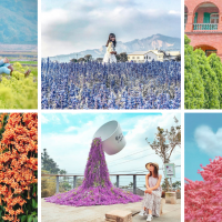 colorful attractions